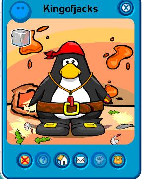 rare-penguin8